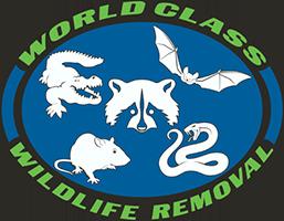 LogoWCXL