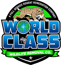 WC Logo XL