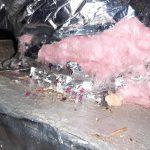 Wildlife insulation damage